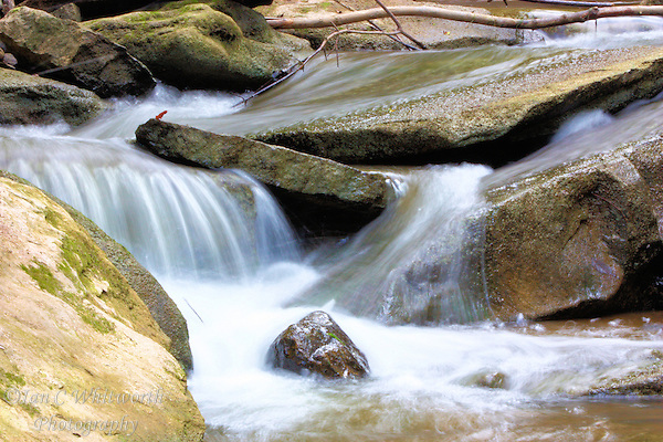 Water flows smoothly amongst the rocks in a fast moving stream (Ian C Whitworth)