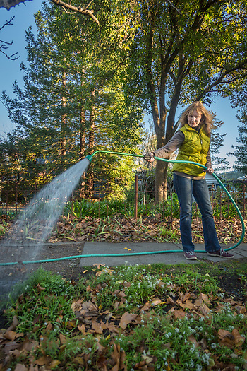 """""""I'm retiring after 30 years in the wine industry.  I'm looking forward to sailing, gardening and exercise...lot's of exercise.""""  Katheryn Thomason waters her garden on Lake Street in Calistoga. (Clark James Mishler)"""