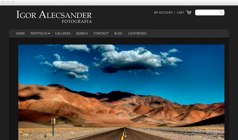 The best photography websites - Photo hosting - Sell photography ...: www.photoshelter.com