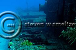 Port Side, Doc Paulson, Grand Cayman (StevenWSmeltzer.com)