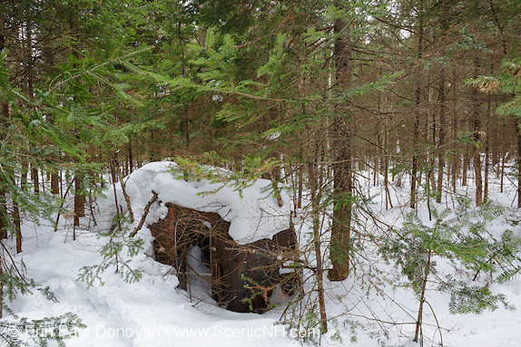 March scene of an abandoned Chevrolet in forest of Franconia, New Hampshire USA during the winter months. This is possibly a 1940s Chevrolet 4-door sedan with trunk. Body plate reads style 40-1019 Body T29194.