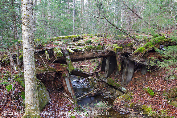 Side view of a decaying timber bridge along the abandoned Mt Washington Branch of the Boston and Maine (B&M) Railroad in the White Mountains, New Hampshire USA. The Mt Washington Branch was built by the Boston, Concord & Montreal Railroad and completed in 1876. This branch traveled from the Fabyan House to the base of the Cog. The branch was closed in June 1932