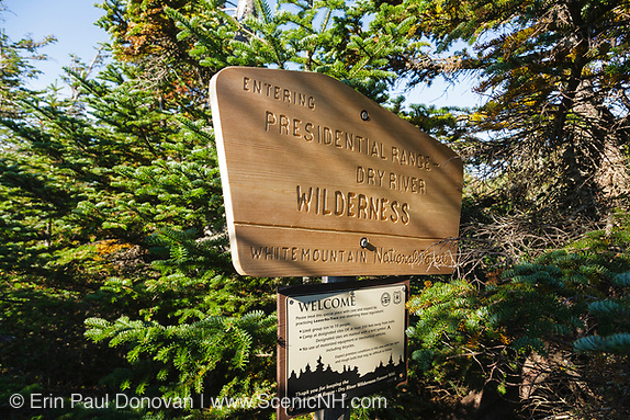 Entering Dry River Wilderness sign along the Mount Eisenhower Trail in the White Mountains, New Hampshire USA during the summer months.