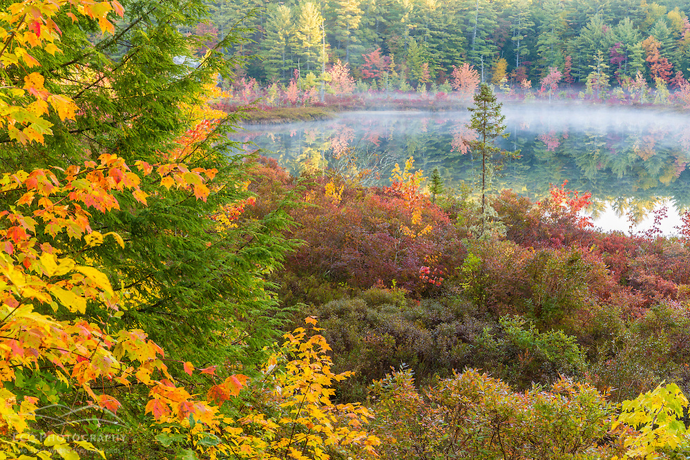 Fall colors in the bog surrounding Round Poind in Barrington, New Hampshire. (Jerry and Marcy Monkman)