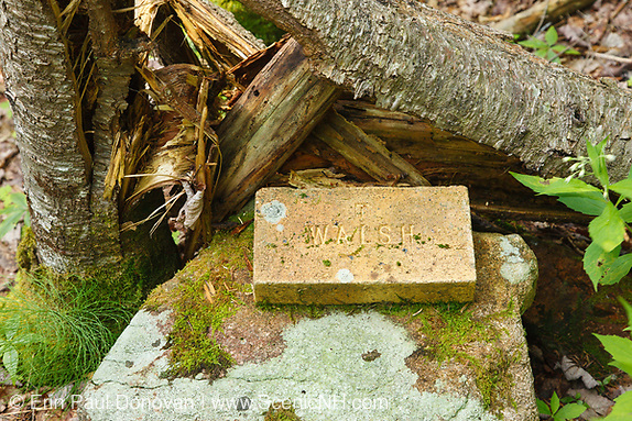 T Walsh brick along an abandoned spur line of the East Branch & Lincoln Railroad in the Thoreau Falls Valley of the Pemigewasset Wilderness in Lincoln, New Hampshire. The EB&L was a logging railroad which operated from 1893-1948.