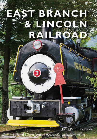 East Branch and Lincoln Railroad book by Erin Paul Donovan.
