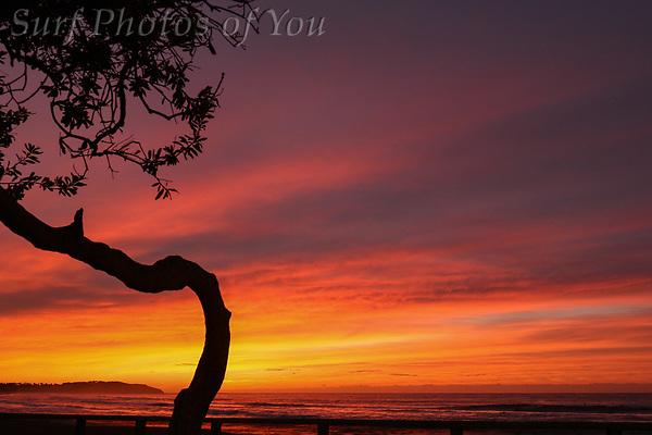 $45.00, 8 June 2018, Dee Why Beach, North Narrabeen, Surf Photos of You, @surfphotosofyou, @mrsspoy ($45.00, 8 June 2018, Dee Why Beach, North Narrabeen, Surf Photos of You, @surfphotosofyou, @mrsspoy)