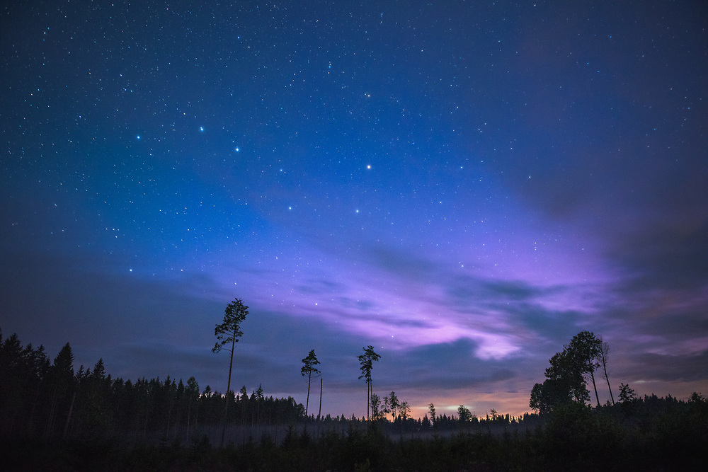 Star constellation of Big Dipper in night sky, lite afterglow and forest clearing in front, Northern Vidzeme, Latvia Ⓒ Davis Ulands | davisulands.com (Davis Ulands/Ⓒ Davis Ulands | davisulands.com)