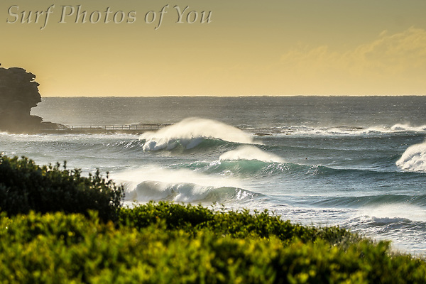 $45.00, 19 June 2019, Narrabeen, Dee Why , Curl Curl, Surf Photos of You, @surfphotosofyou, @mrsspoy ($45.00, 19 June 2019, Narrabeen, Dee Why , Curl Curl, Surf Photos of You, @surfphotosofyou, @mrsspoy)