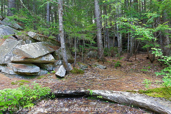 Site of the abandoned Bemis Granite Quarry along the Sawyer River in Harts Location, New Hampshire USA. Dr. Samuel Bemis quarried granite from this site, which he owned at the time, during the 1860s to build Notchland, a granite mansion in Hart's Location.