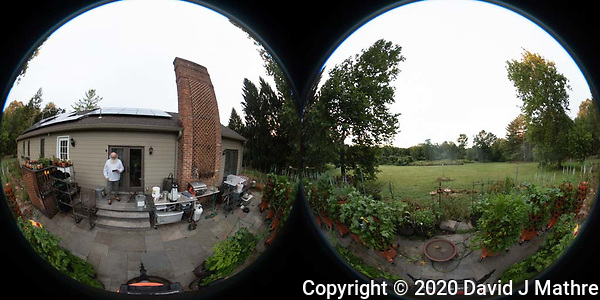 Backyard Sumertime Nature in New Jersey. Image taken with a Theta Z1 360 camera (DAVID J MATHRE)