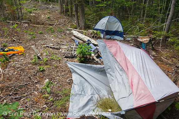 Poor leave no trace ethics - Abandoned campsite along Fire road 511 off of the Kancamagus Highway (route 112) in the White Mountains, New Hampshire.