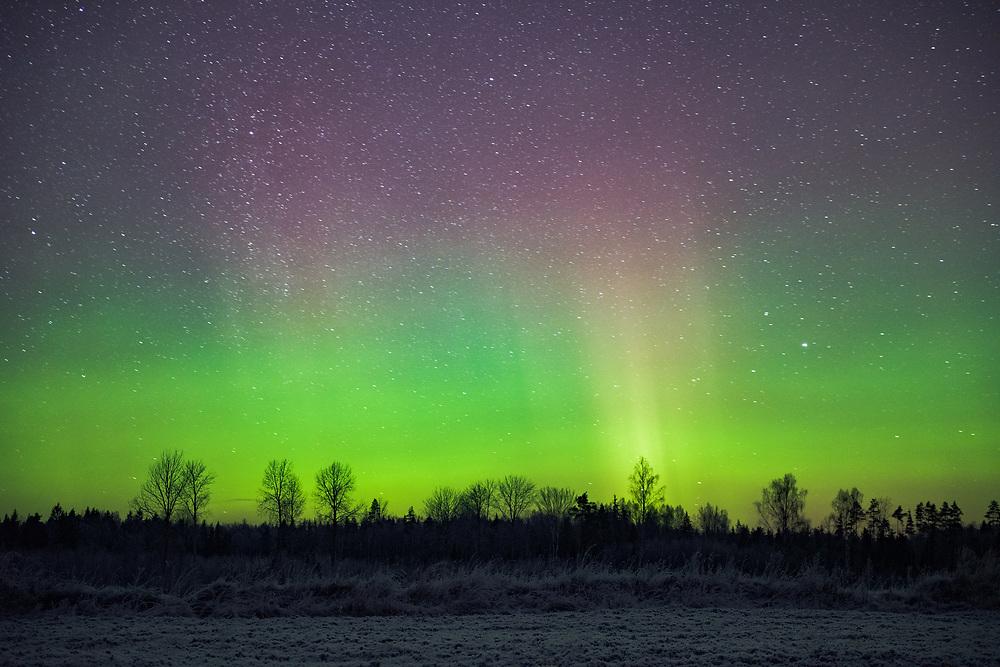 The dancing curtain of Northern lights on New Years eve, Northern Vidzeme, Latvia Ⓒ Davis Ulands | davisulands.com (Davis Ulands/Ⓒ Davis Ulands | davisulands.com)