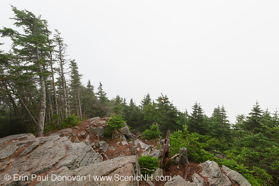 July 2015 - Scenic view from the summit of Mount Tecumseh in Waterville Valley, New Hampshire. Vandalism (illegal tree cutting) has improved the view from the summit. Forest Service verified the cutting is illegal and unauthorized.