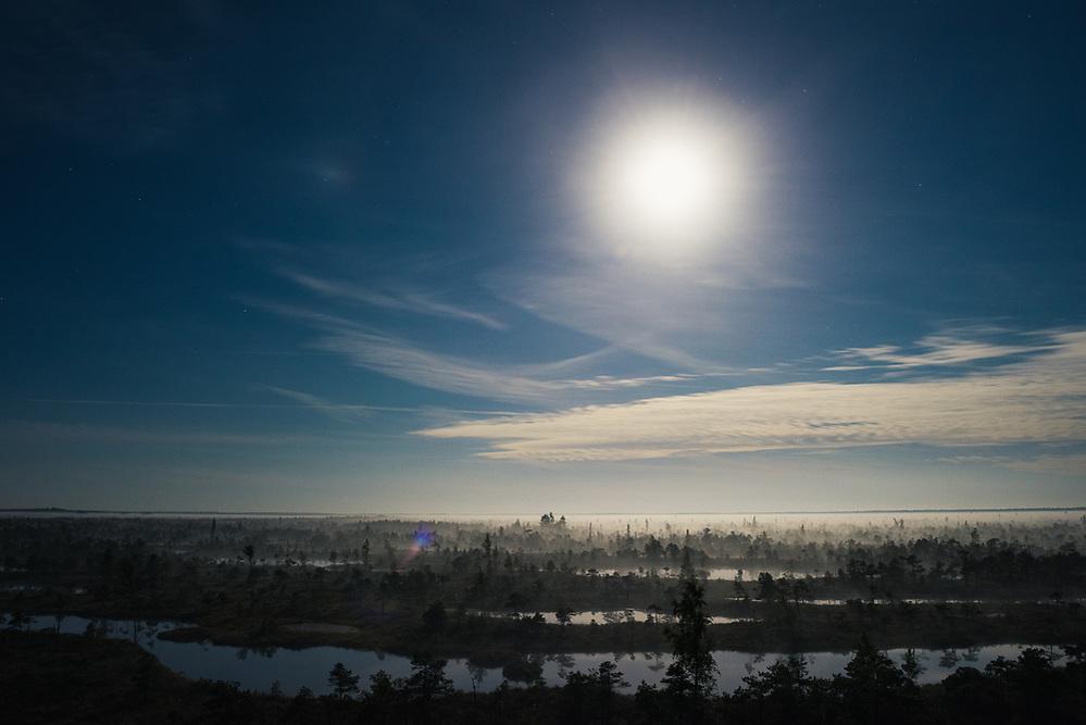 Fool moon illuminates a landscape of raised bog with a lot of bog pools and layer of rising fog, Kemeri National Park (Ķemeru Nacionālais parks), Latvia Ⓒ Davis Ulands | davisulands.com (Davis Ulands/Ⓒ Davis Ulands | davisulands.com)