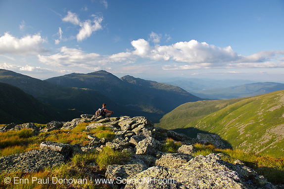 Hiker takes in the view of the Great Gulf Wilderness from along the Appalachian Trail (Gulfside Trail) in the White Mountains, New Hampshire USA during the summer months. Mount Adams (C), Mount Madison (R).