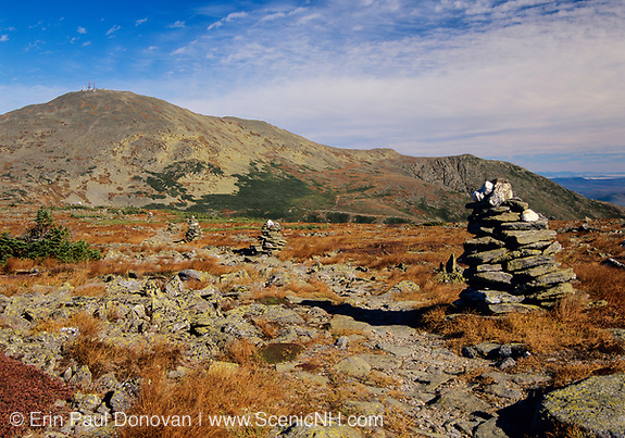 A hiker on Davis Path with Mount Washington in the background during the summer months. Located in the White Mountains, New Hampshire.
