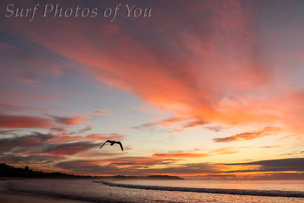 $45.00, 20 May 2019, Dee Why sunrise, Long Reef Beach, Surf Photos of You, @surfphotosofyou, @mrsspoy ($45.00, 20 May 2019, Dee Why sunrise, Long Reef Beach, Surf Photos of You, @surfphotosofyou, @mrsspoy)
