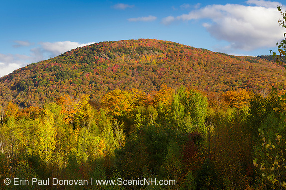 Autumn foliage on Little Coolidge Mountain in Lincoln, New Hampshire on an autumn morning. This mountainside was logged during the East Branch & Lincoln Railroad era.