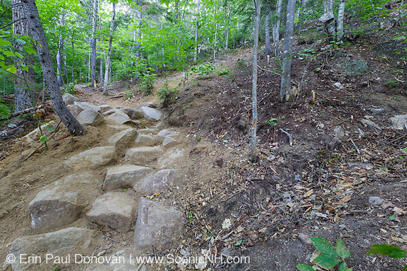 Presidential Range-Dry River Wilderness - Newly built stone steps along the Davis Path during the summer months in the White Mountains, New Hampshire. This is an example of how a professional AMC trail crew does low impact stone work.
