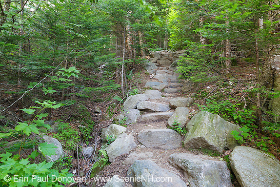 Stone staircase along Valley Way in the New Hampshire White Mountains during the summer months. Today is National Trails Day.