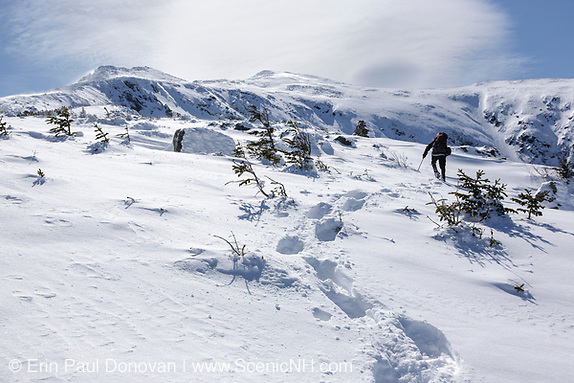 A winter hiker ascends the Airline Trail in extreme weather conditions during the winter months in the White Mountains, New Hampshire.