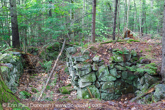 The John Hart Place home site cellar hole along Sandwich Notch Road in Sandwich, New Hampshire. During the early nineteenth century, this abandoned homestead was part of short lived hill farm community (30 to 40 families) that lived in the Notch. By 1860 the only 8 families lived in the Notch, and by the turn of the twentieth century only 1 person lived in the Notch.