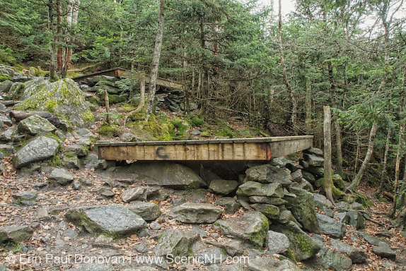 The Perch camping site - Tent platforms at the Perch Shelter located on Perch Path in Cascade Ravine just off Randolph Path and Israel Ridge Path  in the Northern Presidential Range, which is located in the White Mountain National Forest of New Hampshire USA .