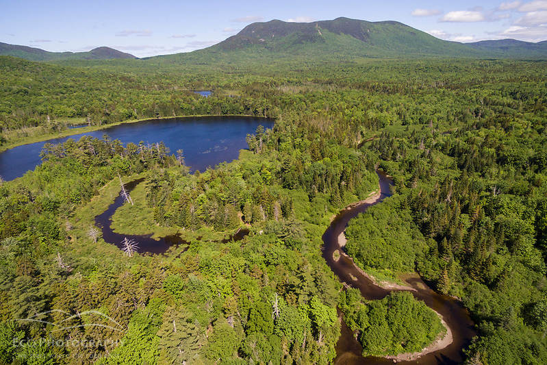 An aerial view of the West Branch of the Pleasant River, Little Lyford Pond, and Baker Mountain in Maine's 100 Mile Wilderness. (Jerry Monkman)