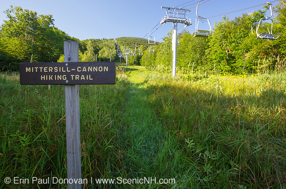 Franconia Notch - The Mittersill - Cannon Trail  on Cannon / Mittersill Mountain in the White Mountains, New Hampshire USA during the summer months.