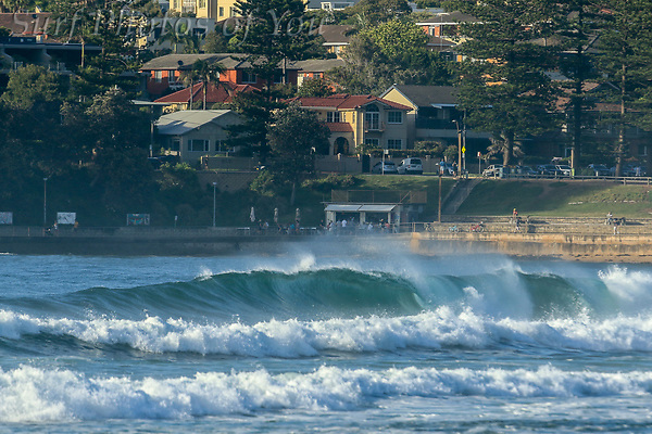 $45.00, 3 December 2018, Dee Why, Long Reef, Surf Photos of You, @surfphotosofyou, @mrsspoy (SPoY2014)