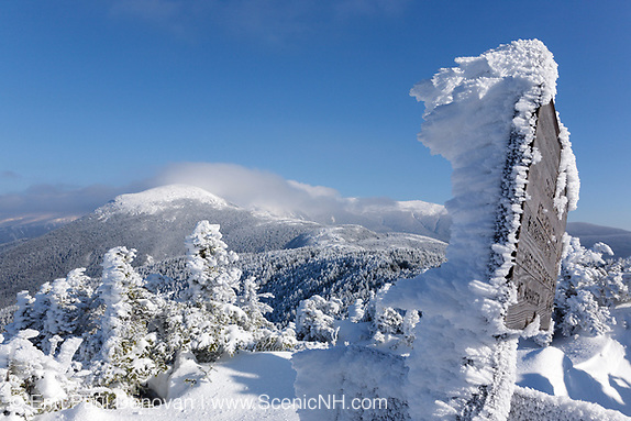 Appalachian Trail - Mount Eisenhower from Crawford Path in the White Mountains, New Hampshire.