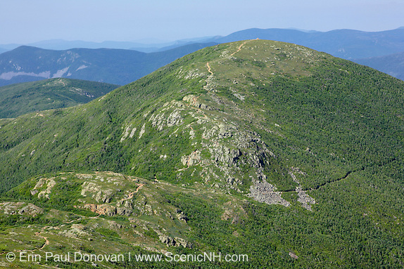 Mount Eisenhower in the Presidential Range from along the Crawford Path (Appalachian Trail) in Sargent's Purchase in the New Hampshire White Mountains