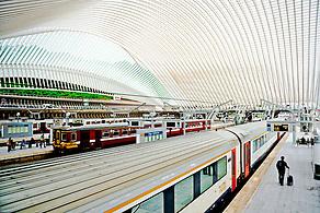 Liège-Guillemins: Train Station by Santiago Calatrava (Anna Fishkin)