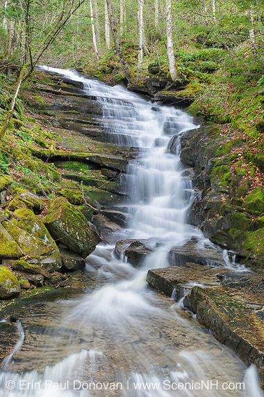 Plimpton Falls in Franconia, New Hampshire USA during the spring months. These falls are located on Meadow Brook.