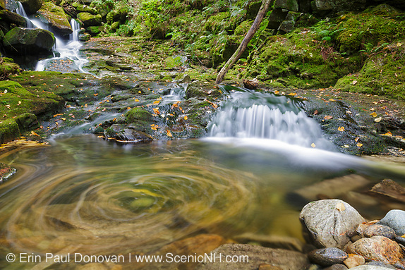 Devils Kitchen Gorge along Bumpus Brook in Randolph, New Hampshire USA during the autumn months.