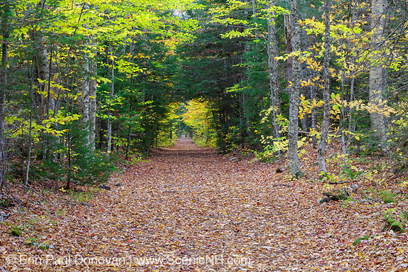 Trail in the White Mountains, New Hampshire during the autumn months.