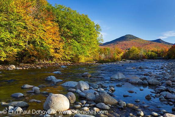 Autumn foliage on Big Coolidge Mountain from along the East Branch of the Pemigewasset River in Lincoln, New Hampshire on an autumn morning.