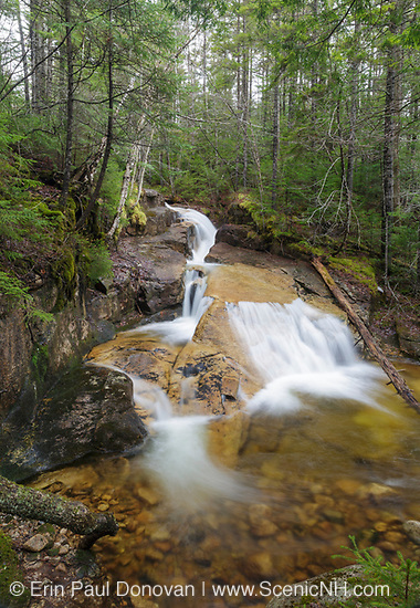 Shell Cascade in Waterville Valley, New Hampshire during the spring months.This cascade is located on Hardy Brook.
