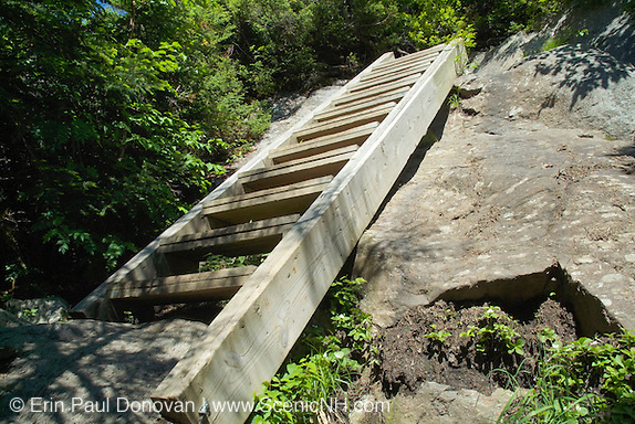 A wooden ladder on Lions Head Trail during the summer months in the White Mountains of New Hampshire.