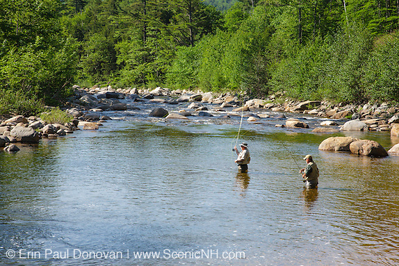 Fly fishing along the Swift River in the White Mountains, New Hampshire.
