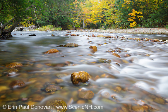 Gale River in Franconia, New Hampshire USA during the autumn months.