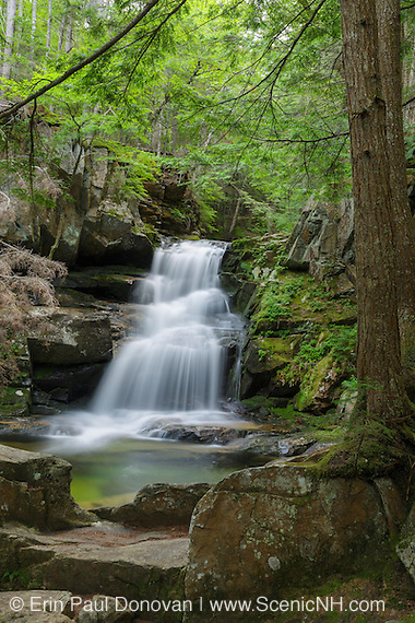 Cold Brook Falls along Cold Brook in Randolph, New Hampshire during the summer months.