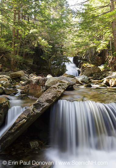 Cold Brook Falls along Cold Brook in Randolph, New Hampshire USA during the spring months.