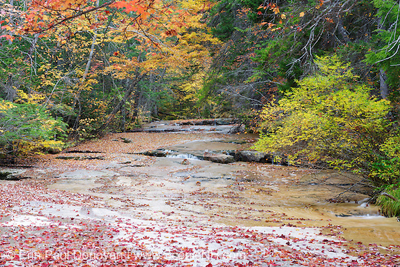 Ledge Brook in the White Mountains, New Hampshire USA during the autumn months. This brook is located off of the Kancamagus Scenic Byway.