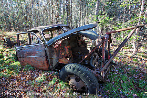 Abandoned 1950s Chevy in forest near pond in Woodstock, New Hampshire.