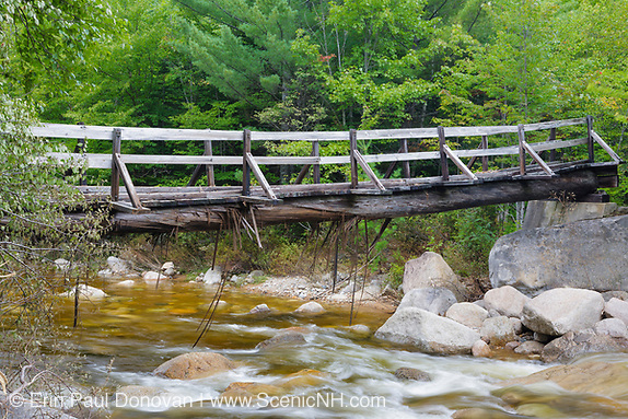 Pemigewasset Wilderness - High waters from flash floods from Tropical Storm Irene in 2011 cause peeling to the bottom of a  footbridge, which crosses the East Branch of the Pemigewasset River along the Thoreau Falls Trail at North Fork Junction in Lincoln, New Hampshire USA. The bridge is supported by two large white pines and looks to have received some damage. This tropical storm / hurricane caused destruction along the East coast of the United States and the White Mountain National Forest of New Hampshire was officially closed during the storm.