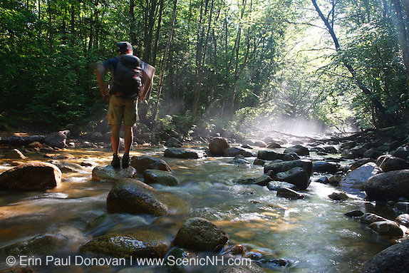 Hiker standing on rock in morning fog along Cedar Brook during the summer months in the Pemigewasset Wilderness of Lincoln, New Hampshire USA. This area was part of the East Branch & Lincoln Railroad, which was a logging railroad which operated from 1893 - 1948.