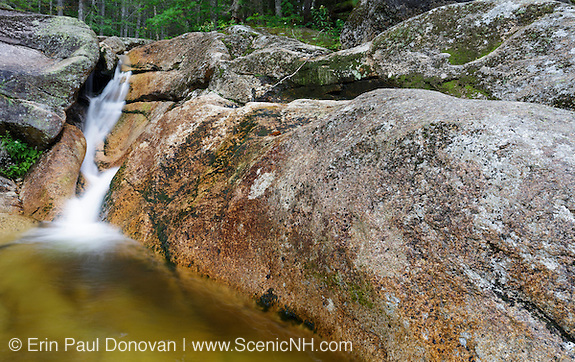 Mt Field Brook Cascades in Bethlehem, New Hampshire USA during the summer months.