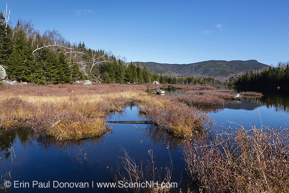 Flat Mountain Pond in the Sandwich Range Wilderness of Waterville Valley, New Hampshire during the autumn months. The Beebe River Logging Railroad (1917-1942) traveled through this section (on the left). And this is also the area of where logging Camp 10 is thought to have been located.
